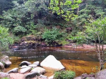 Sharrah Pool: a section of the river surrounded by green trees, boulders at the edge